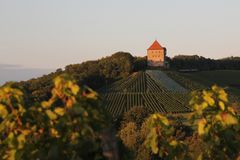 Burg Wildeck...