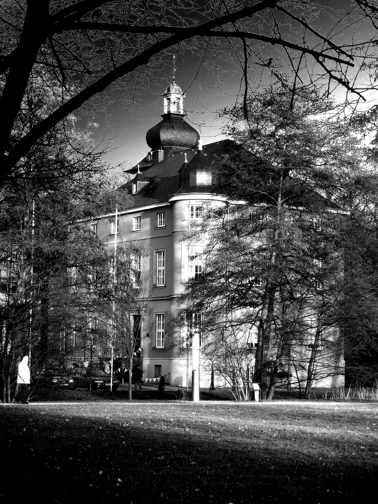 Burg Wissem