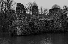 Burgruine Eibach