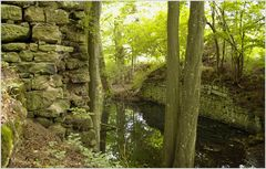 Burgruine Leonrod - geraden Weges zum Tor