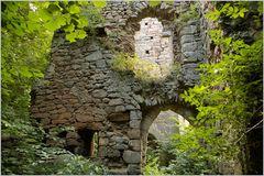 Burgruine Leonrod - in den Räumen 1