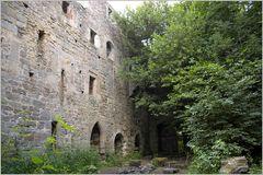 Burgruine Leonrod - man lässt sich langsam mitreißen...