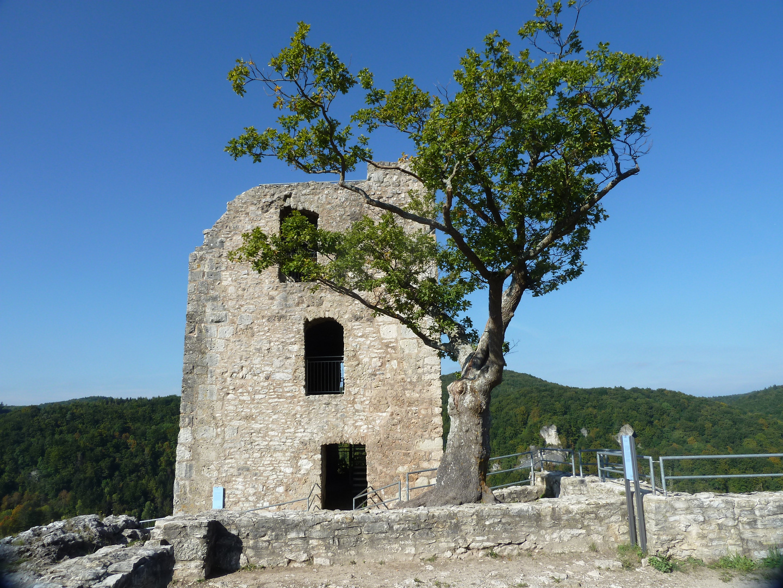 Burgruine Neideck (1)