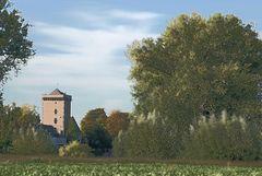 Burgturm bei Zons am Rhein