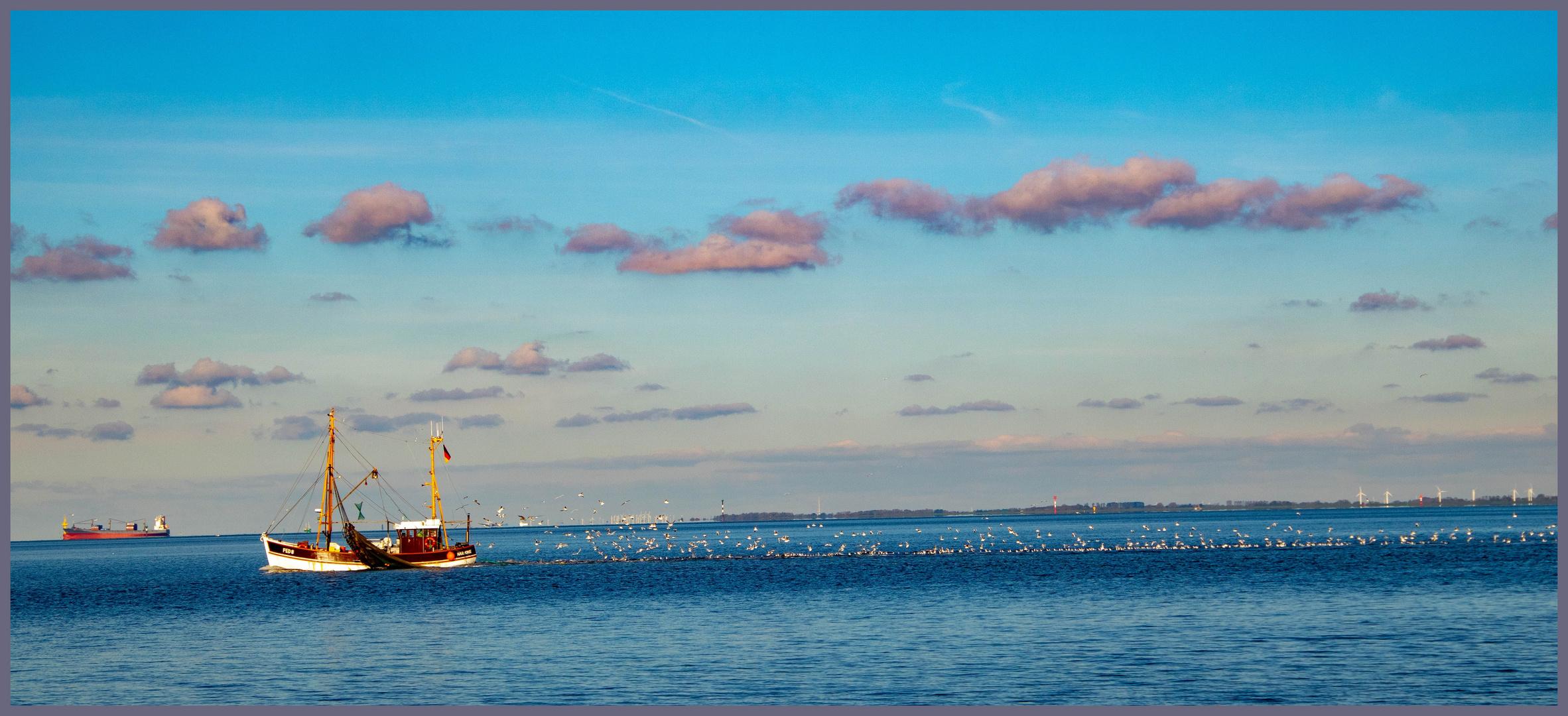 Burhaven hier mal dem Krabbenfischer zugeschaut