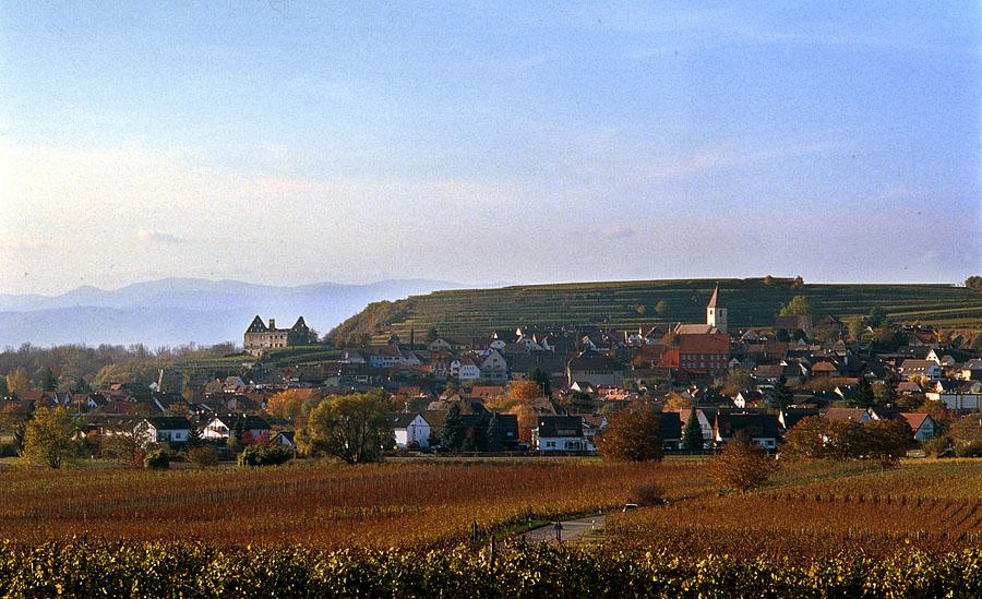 Burkheim im Kaiserstuhl 3
