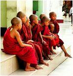 Burmese days #16