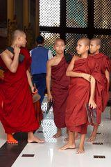 Burmese novice monks