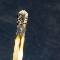 Burn-out  - kopflos