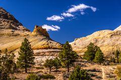Burr Trail 1, Utah, USA