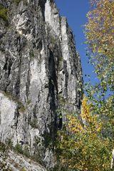 Burschlwand