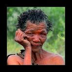Bushgrandmother