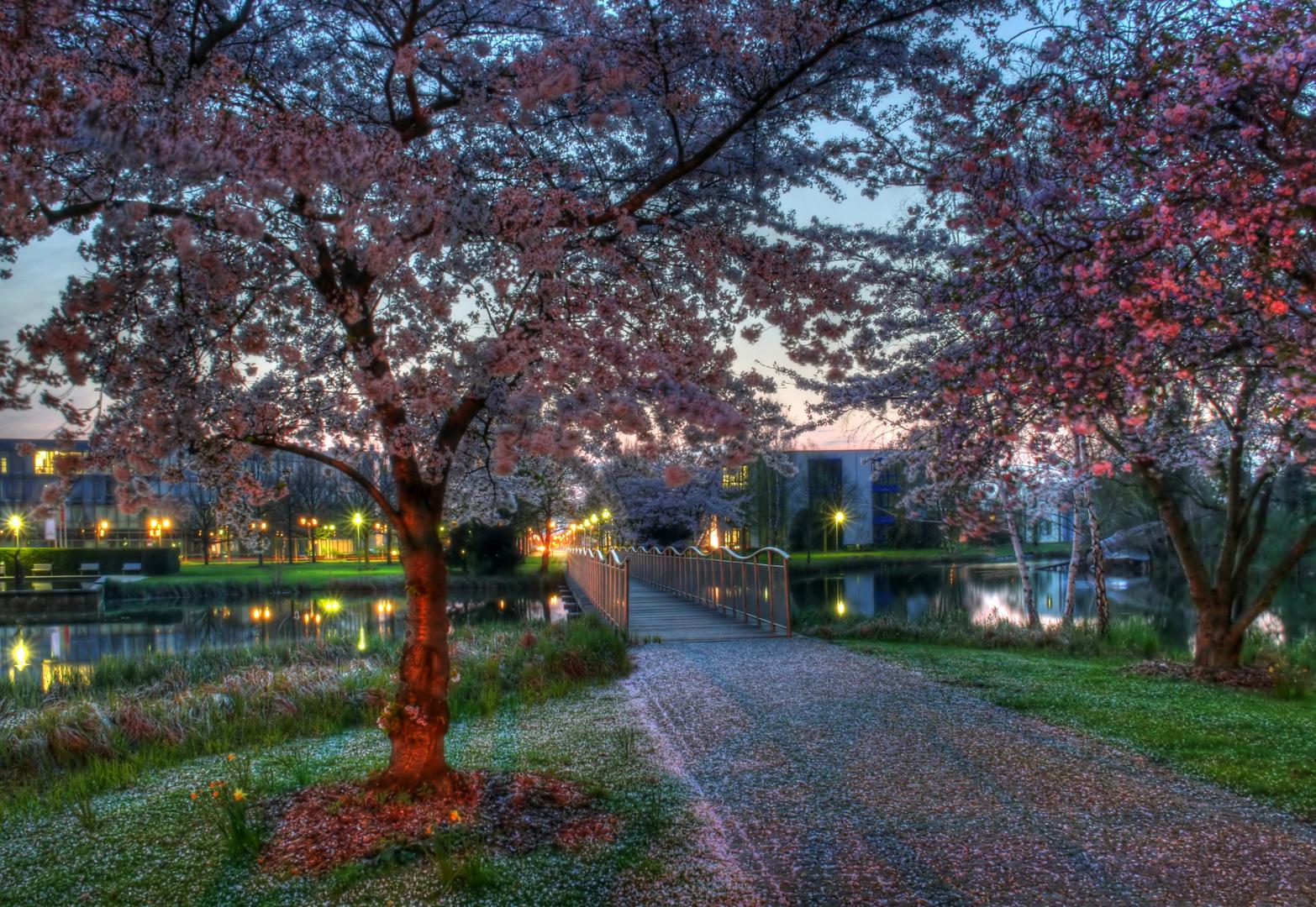 Business Park Duisburg, Brücke