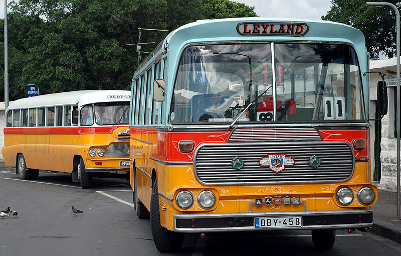 Busses from Malta