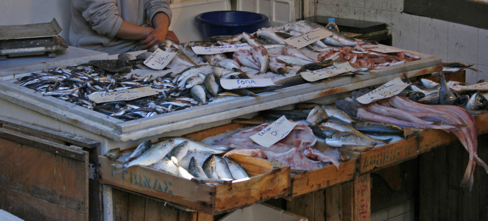 Busy day at the fish shop in Aegina city