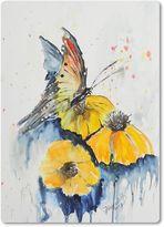 butterfly........