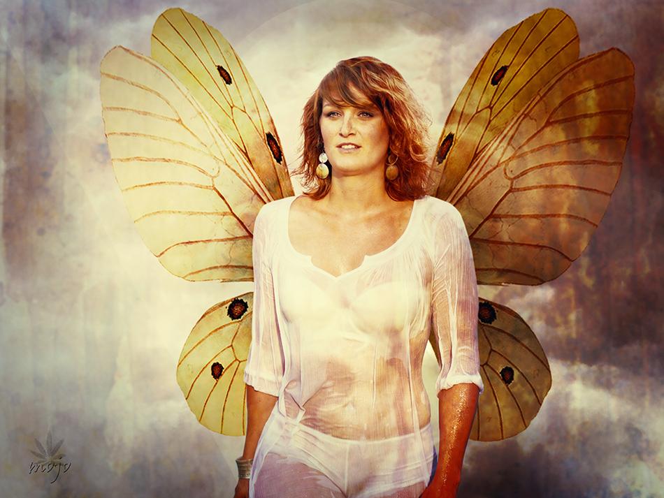 [Butterflyeffect]