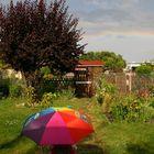 C. bestaunt den Regenbogen