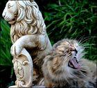 C 'est qui le lion???