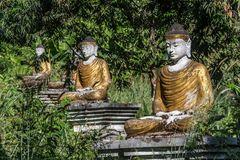 C1089_Myanmar - Lubini Park
