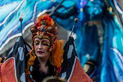 C1194 Samba Karneval - Laune der Natur
