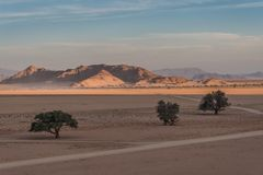 C1266 Namibia - Sossusvlei - Elim Dune