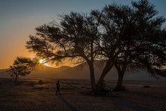 C1332 Namibia -  Sossusvlei - Düne 45