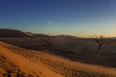 C1333 Namibia -  Sossusvlei - Düne 45