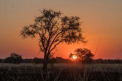 C1410 Namibia - Chobe River