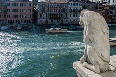 C1455 Venedig