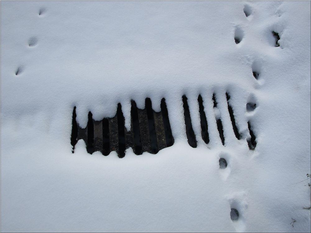 ..Ca ne fond pas à - 7° dans le Loiret