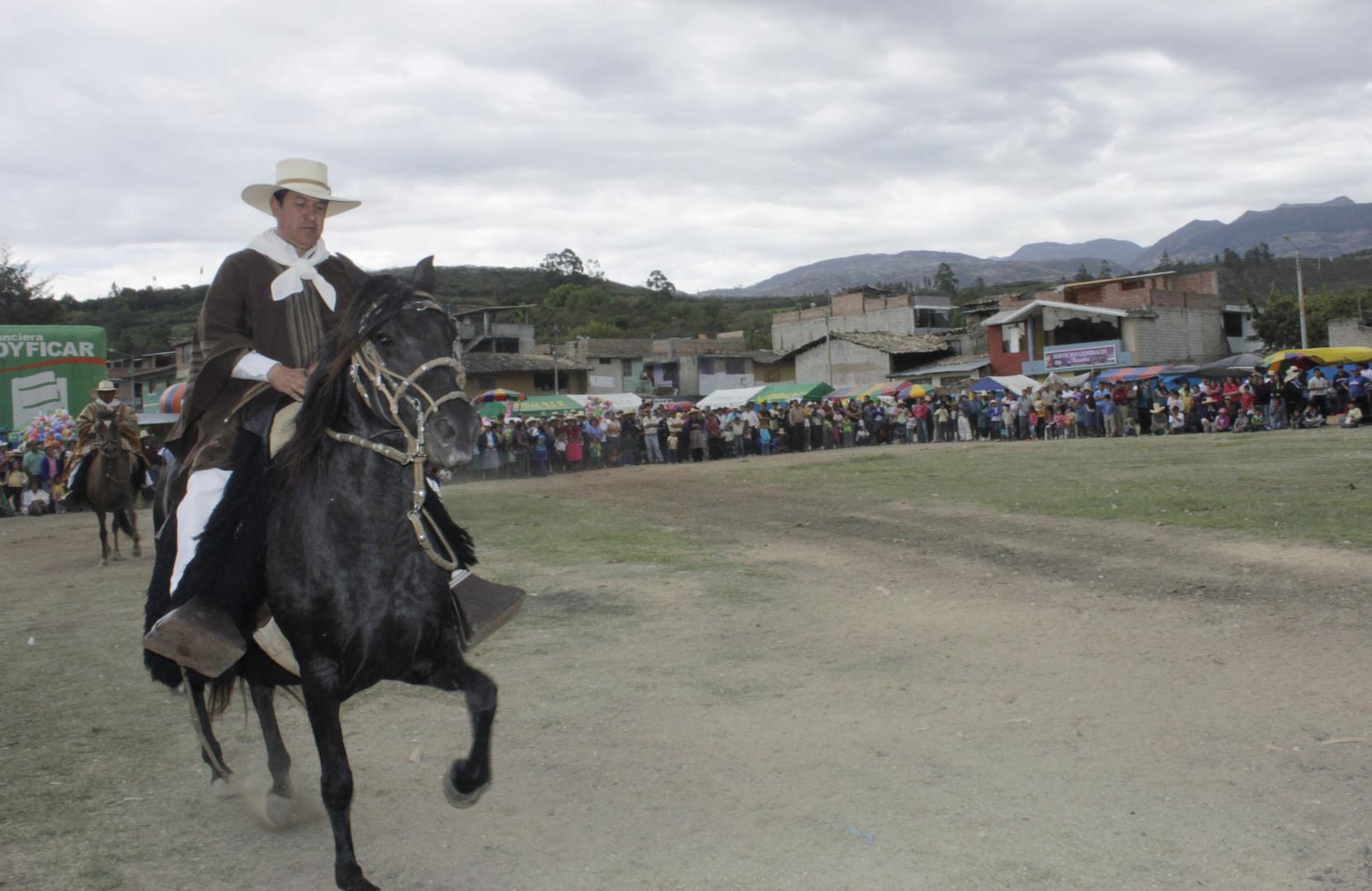 Caballo Peruano de Paso en San Marcos Cajamarca