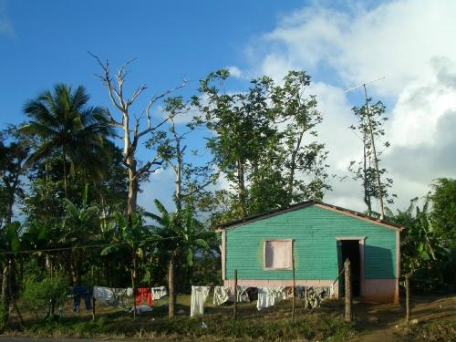 cabane des Caraïbes