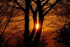 Cache-cache solaire