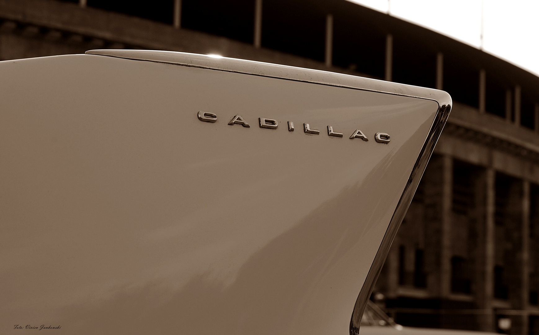 Cadillac-Flosse