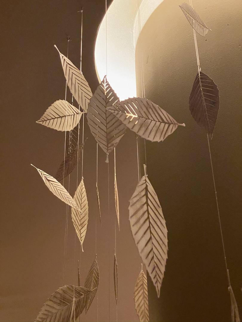 ....cadono le foglie.....