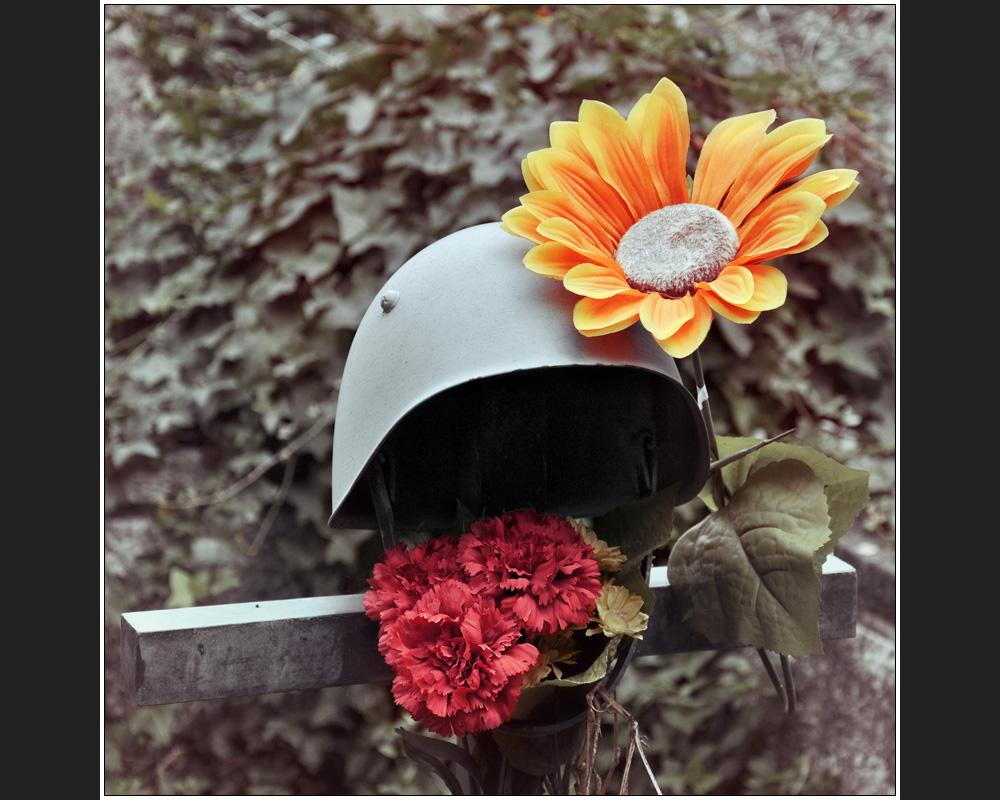 Caduti in guerra