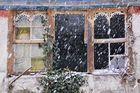 Cae la nieve...