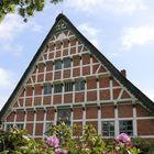 Café in Neuenfelde im Alten Land