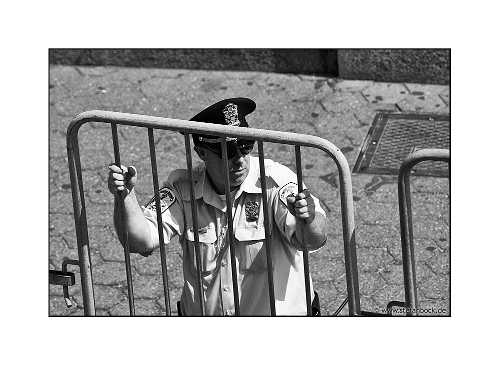 Caged, New York City Serie XXIX
