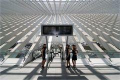 Calatravas hostesses