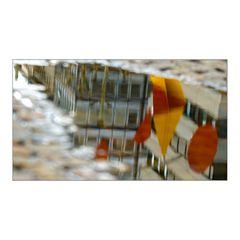 Calder reflected