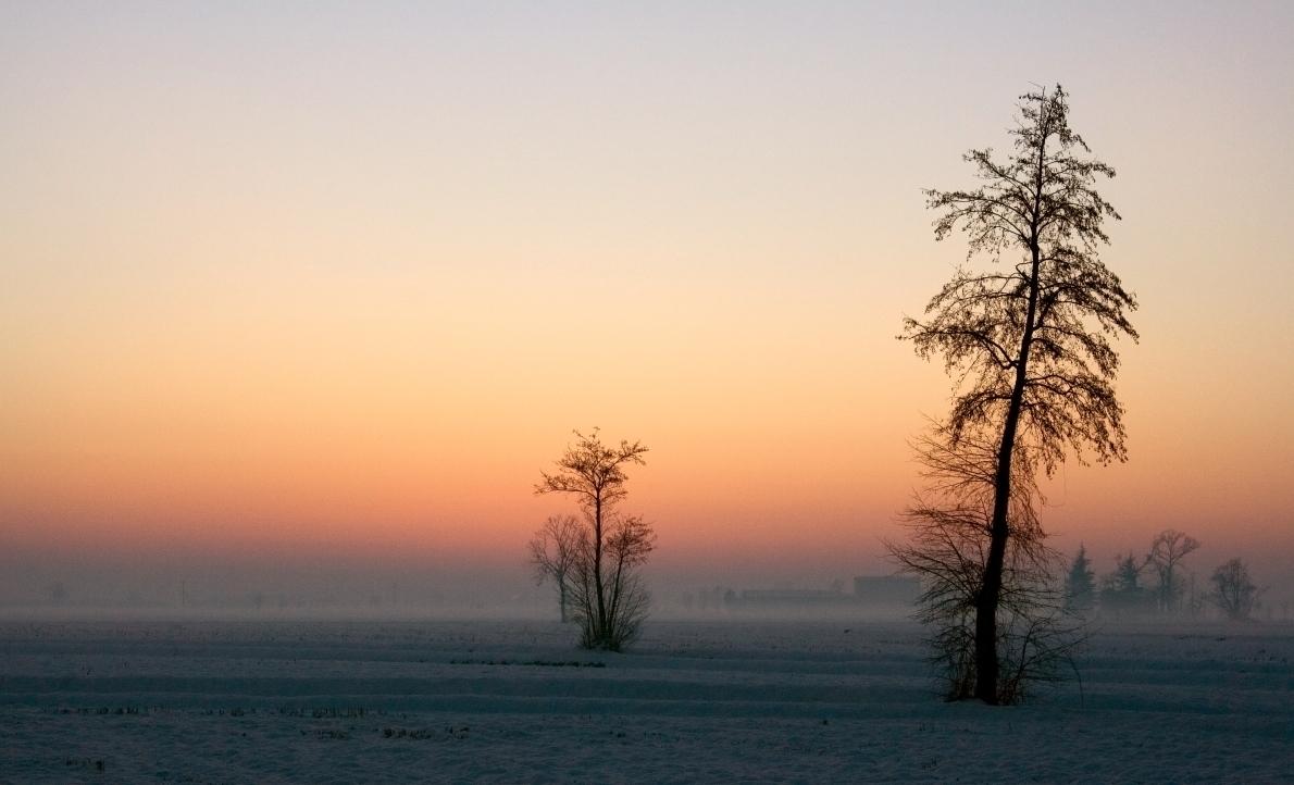 Caldo inverno