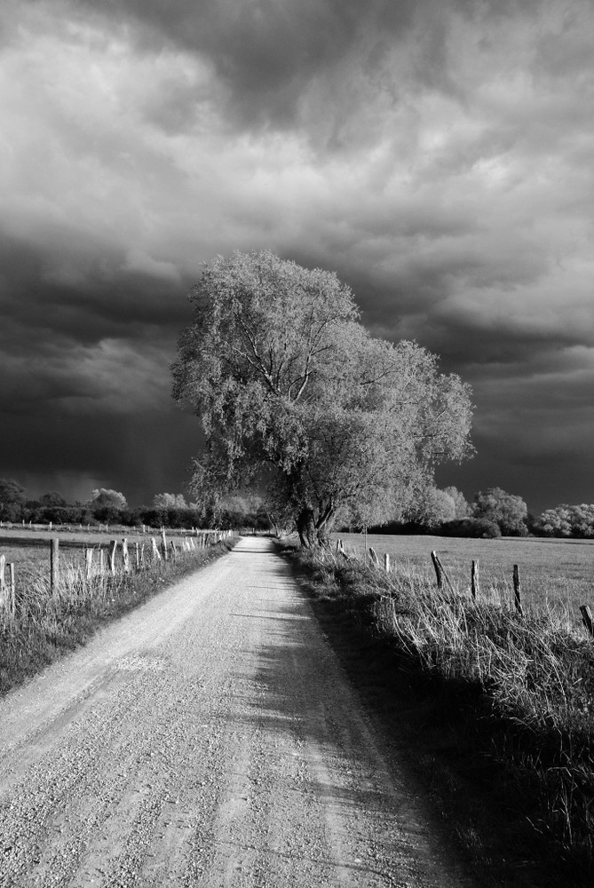 Calenberger Land - Aufziehendes Gewitter
