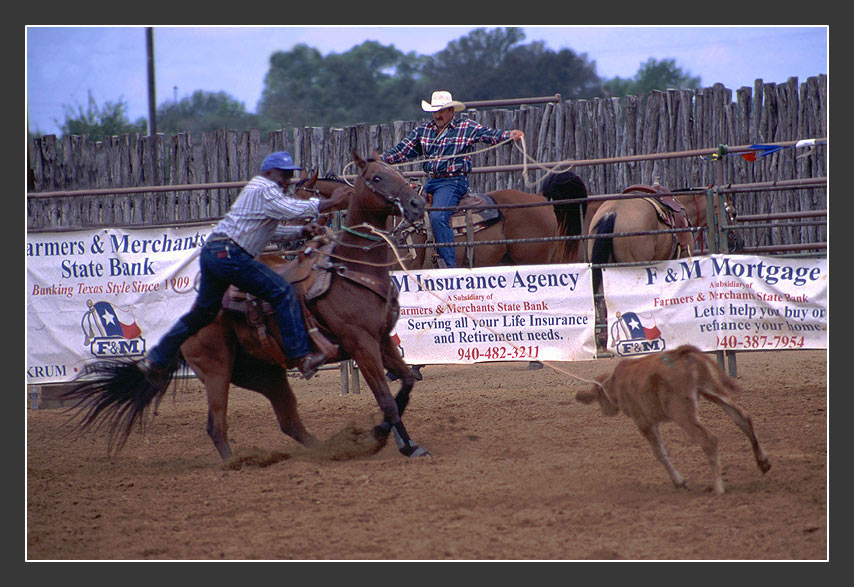Calf Roping, TX   #2
