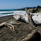 CALIFORNIA - MOONSTONE BEACH 2