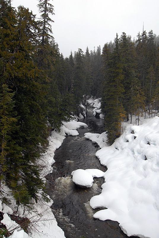 Callaghan Creek