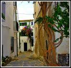 Calle típica de Cadaqués