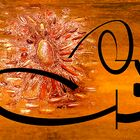 calligraphie 34