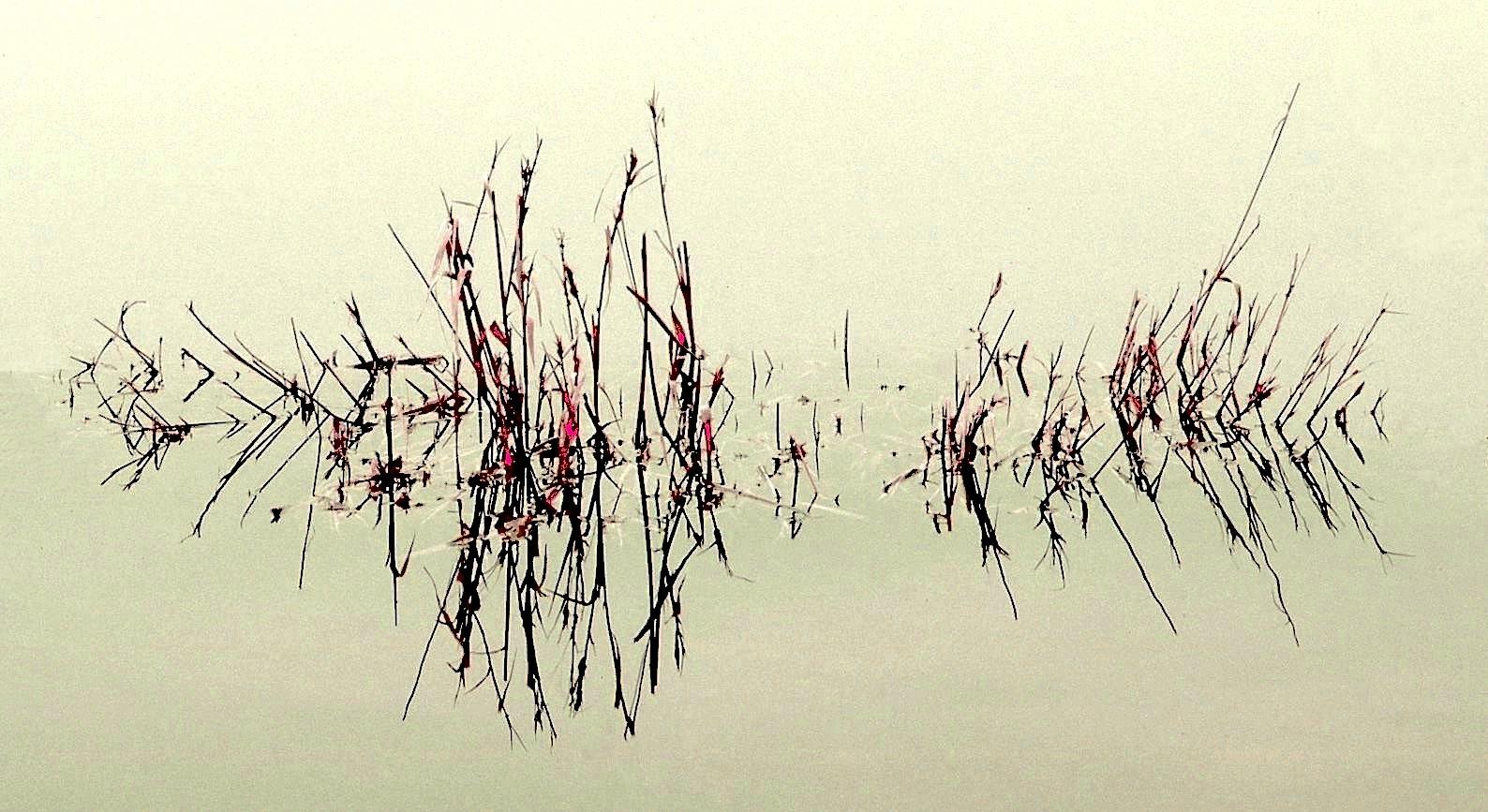 Calligraphie zen